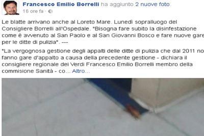Sanità napoletana nel degrado: blatte anche al Loreto Mare
