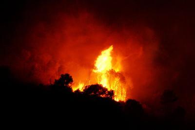 Incendio in una baracca: vigili del fuoco in azione